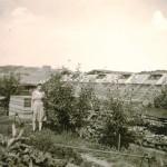 Erstes Gewächshaus